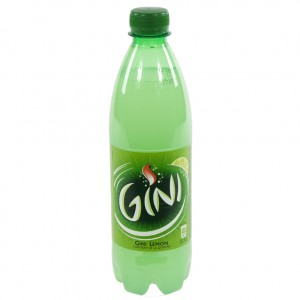 Gini PET  Regular  50 cl   Fles