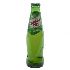 Canada dry  20 cl   Fles