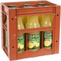 Copeo fruitsap  Ananas  1 liter  Bak  6 fl