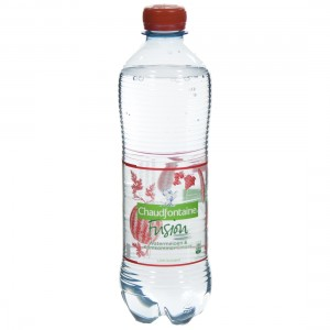 Chaudfontain Fusion Pet  Watermelon  50 cl   Fles